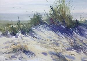 Afternoon in the Dunes by Sandra Strohschein