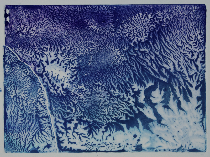This is a monoprint by Sarah Beaumont done in a monoprinting workshop in Brecon Beacons.