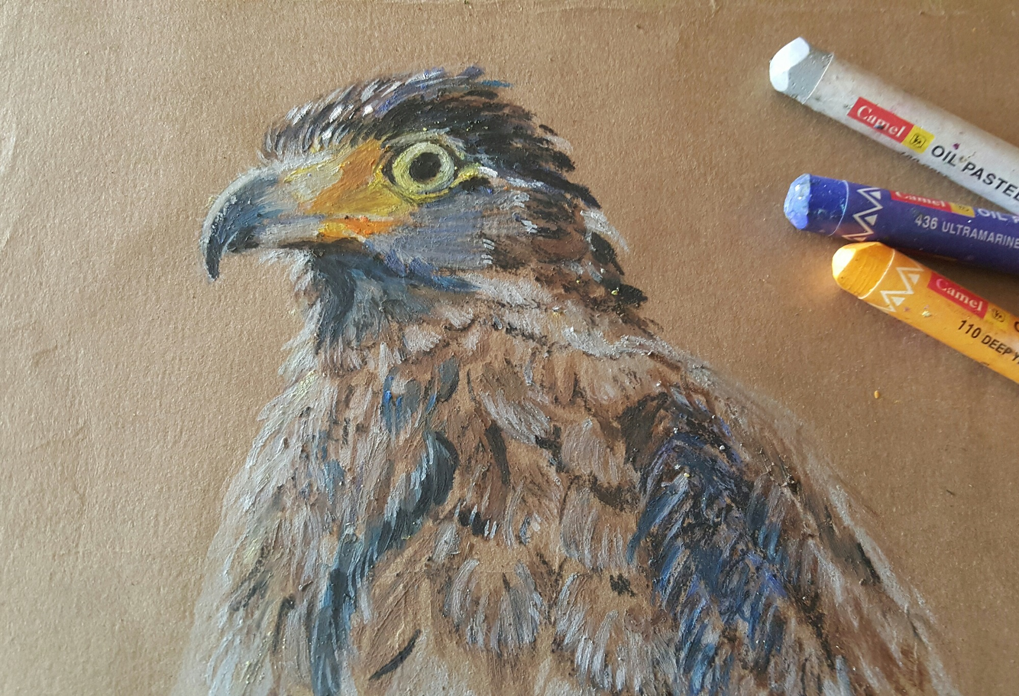"'Crested Serpent Eagle' Anita Bhatia Oil Pastels on Tinted Paper, 6"" x 8"""