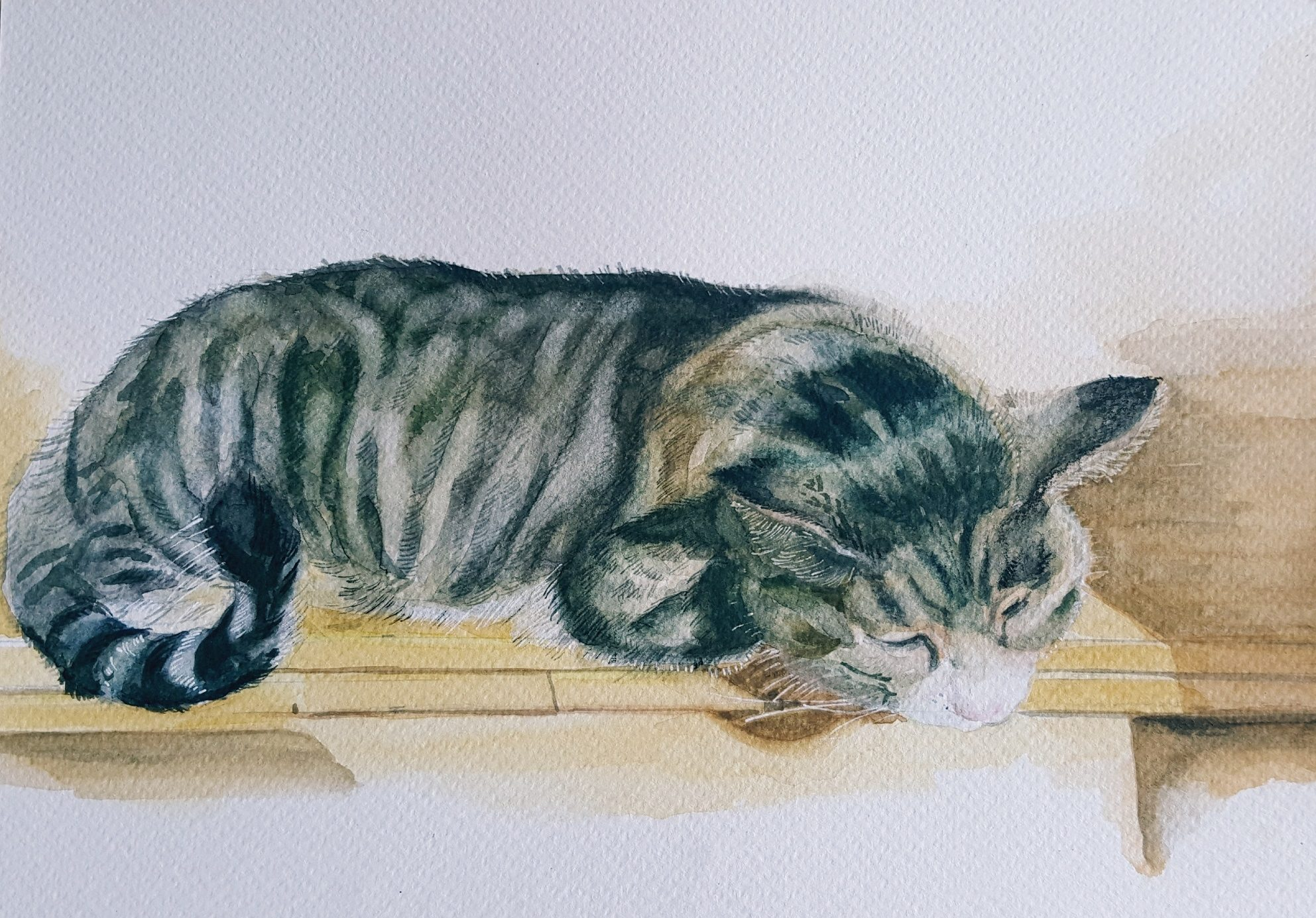"'Loki the Cat' Anita Bhatia Watercolour, 8"" x 12"""