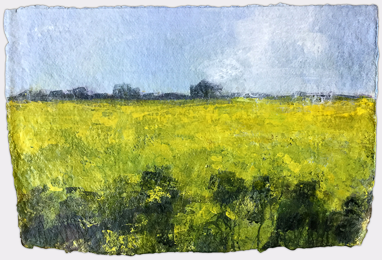 Spring Rape at Sunk Island, John D. PettyThe ubiquitous oil-seed rape seems to epitomise industrial agri-business. But it's a subject that I can't ignore and it has to be captured whilst in flower because when it's gone to seed it's not very appealing at all. This painting happened quite quickly and was made in 2016. Acrylic on paper, 22x15 inches.