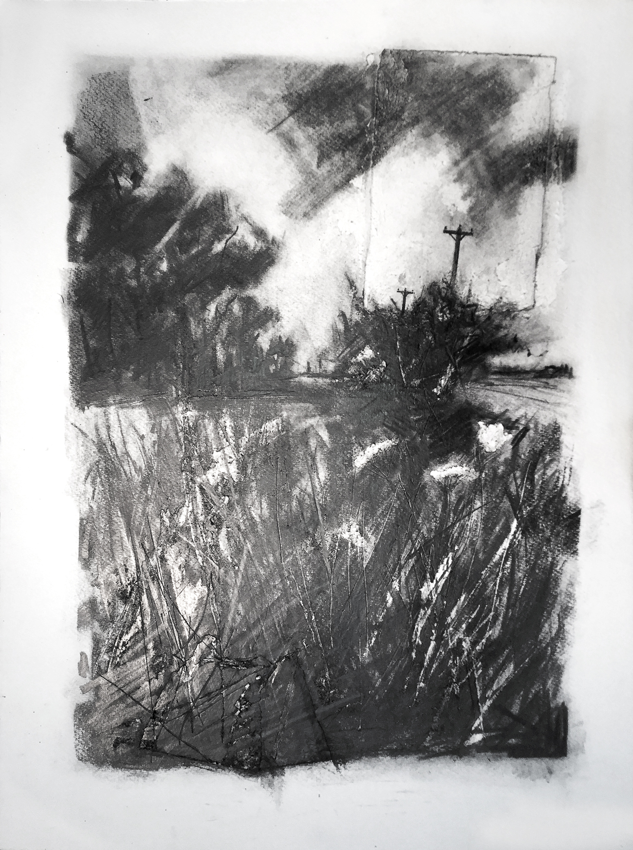 Roadside Verge, Stray Road, John D. Petty A drawing made in 2017 from sketches done the same year when the cow parsley was up high. I use the hard plastic eraser and sharp tools to extend the mark-making. Sometimes I might paste on new paper where the surface has become very abraded. Graphite on paper, 30x22 inches.