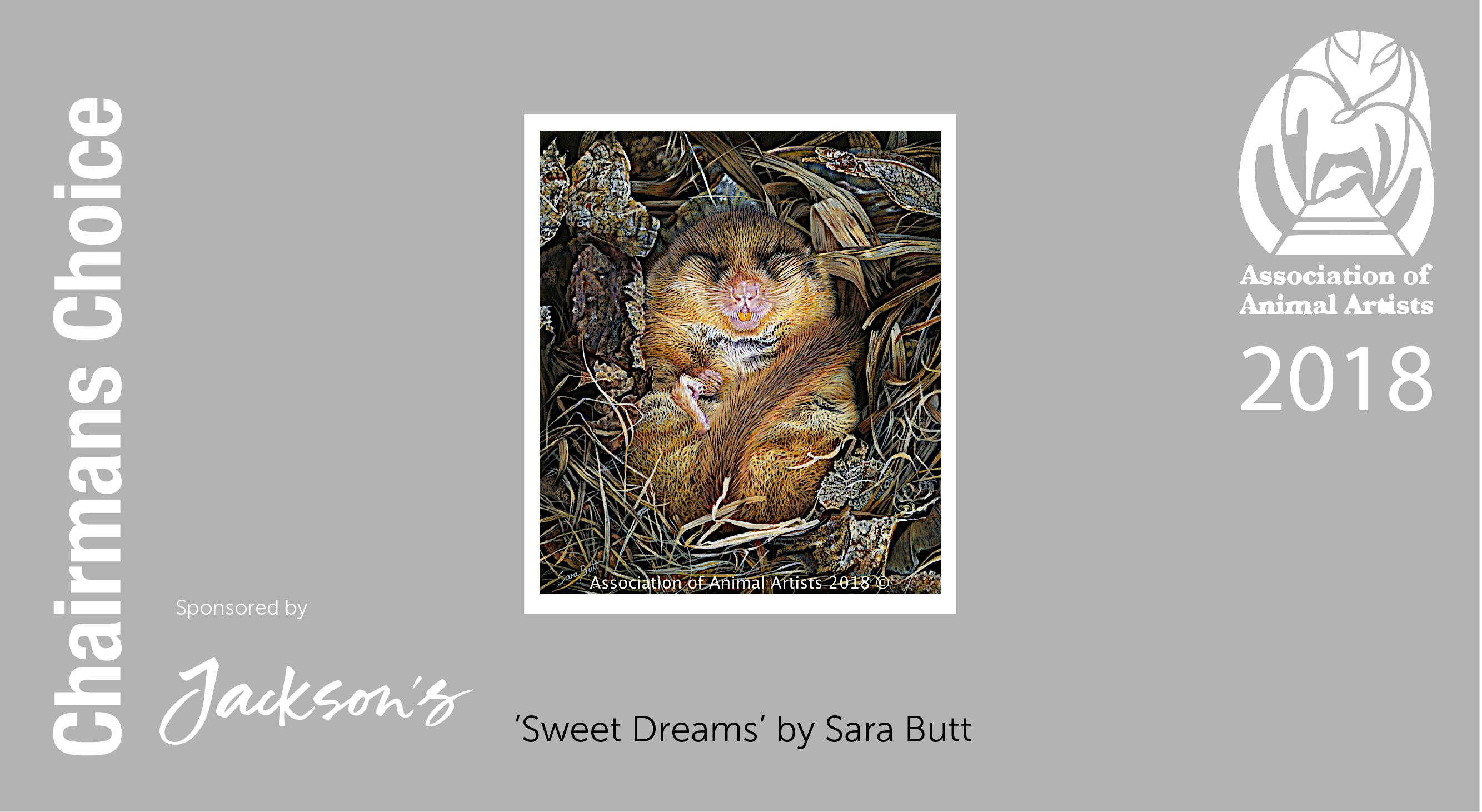 Slide of Sara Butts winning piece fot the Association of Animal Artists