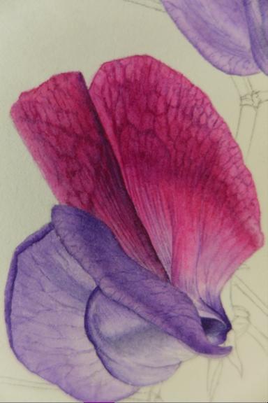 Christine Battle, petals in progress
