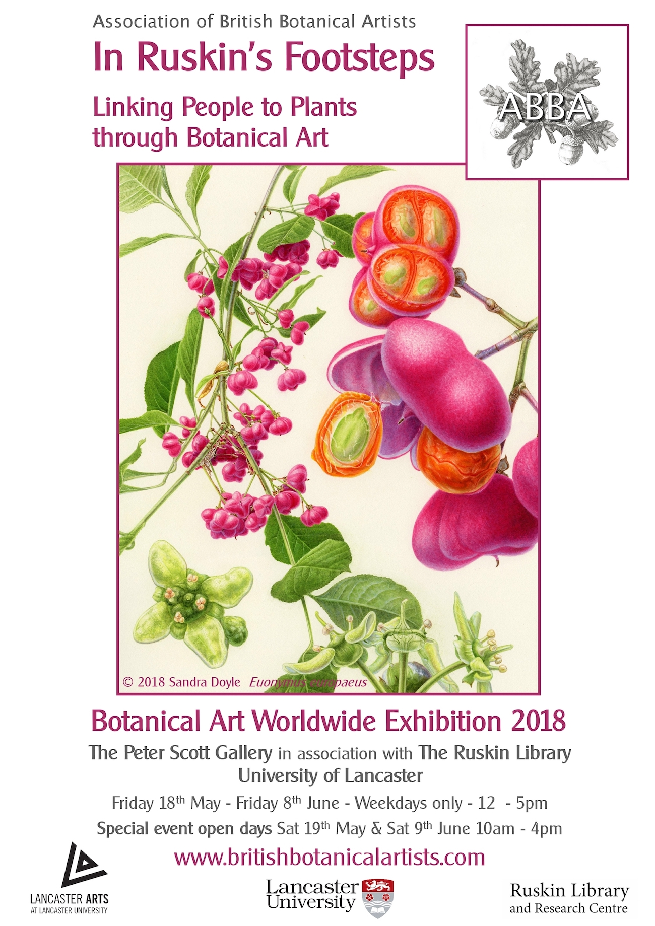 Exhibition flyer for Ruskin's Exhibition– showing completed Spindle illustration by Sandra Doyle in acrylic ink, Worldwide Day of Botanical Art