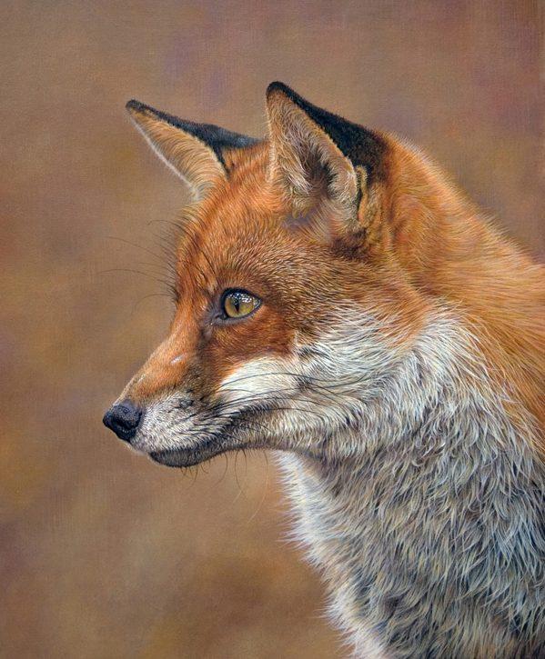 Fox, Sara Butt