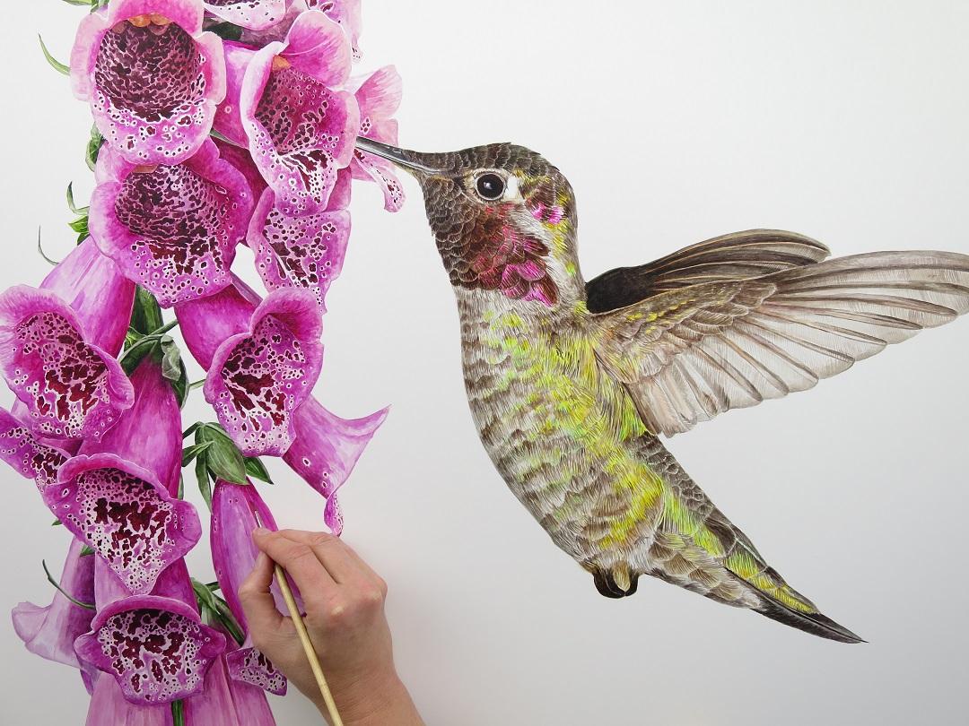 Anna Mason painting 'Anna's Hummingbird'
