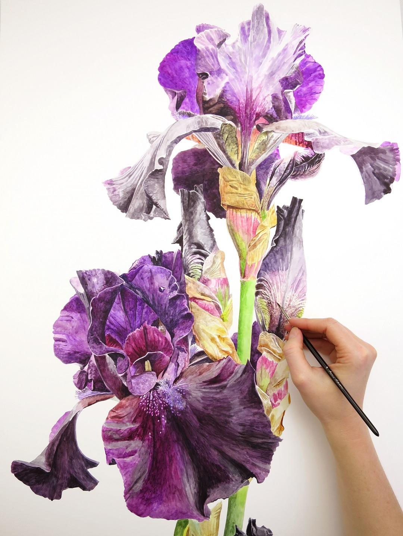 Anna Mason painting Irises