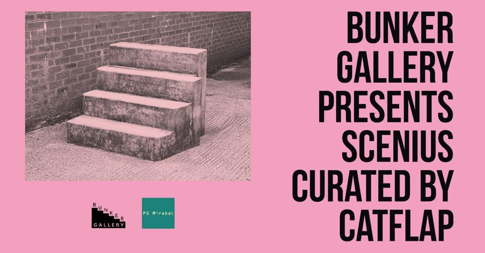 Catflap Press Release, art exhibitions in August