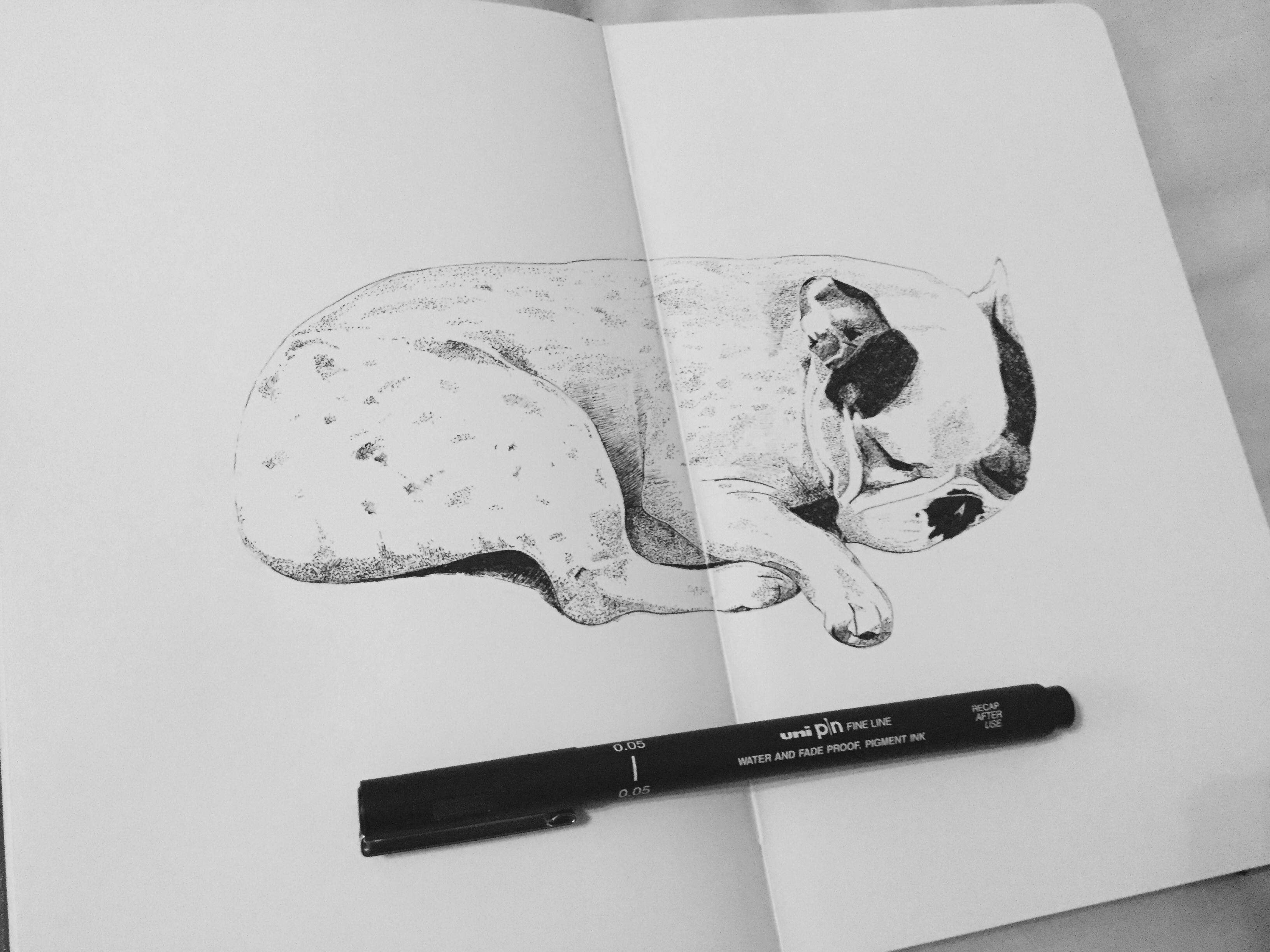 Alice in Slumberland Christopher Durant Hi uni pens and Staedtler pigment liners 2017