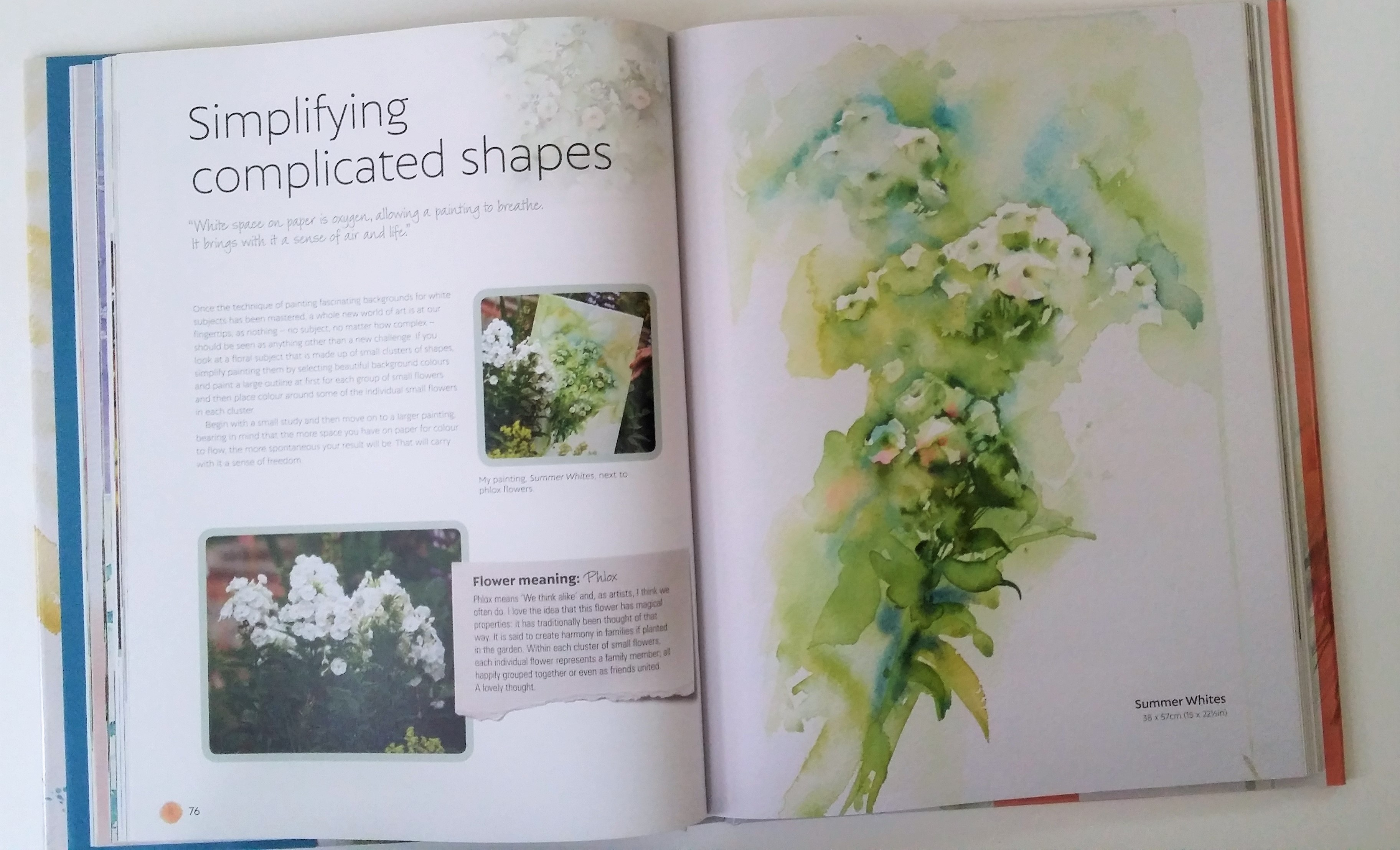 Simplifying Complicated Shapes, from Atmospheric Flowers in Watercolour