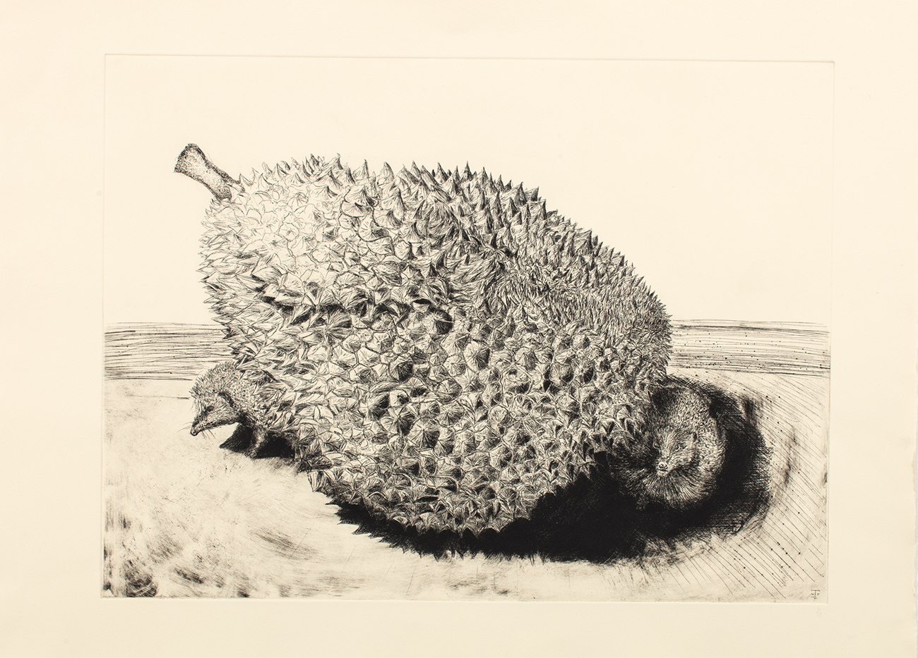 Jack-Fawdry-Tatham_The-Durian-and-Her-Hedgehogs-CH-