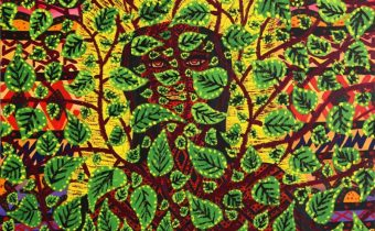Nixiwaka Yawanawá Spirits Rainforest Amazon Painting