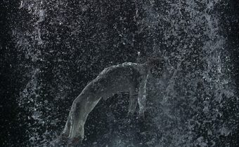 Bill Viola, Tristan's Ascension (The Sound of a Mountain Under a Waterfall), 2005. Video/sound installation. Performer: John Hay. Courtesy Bill Viola Studio. Photo: Kira Perov.