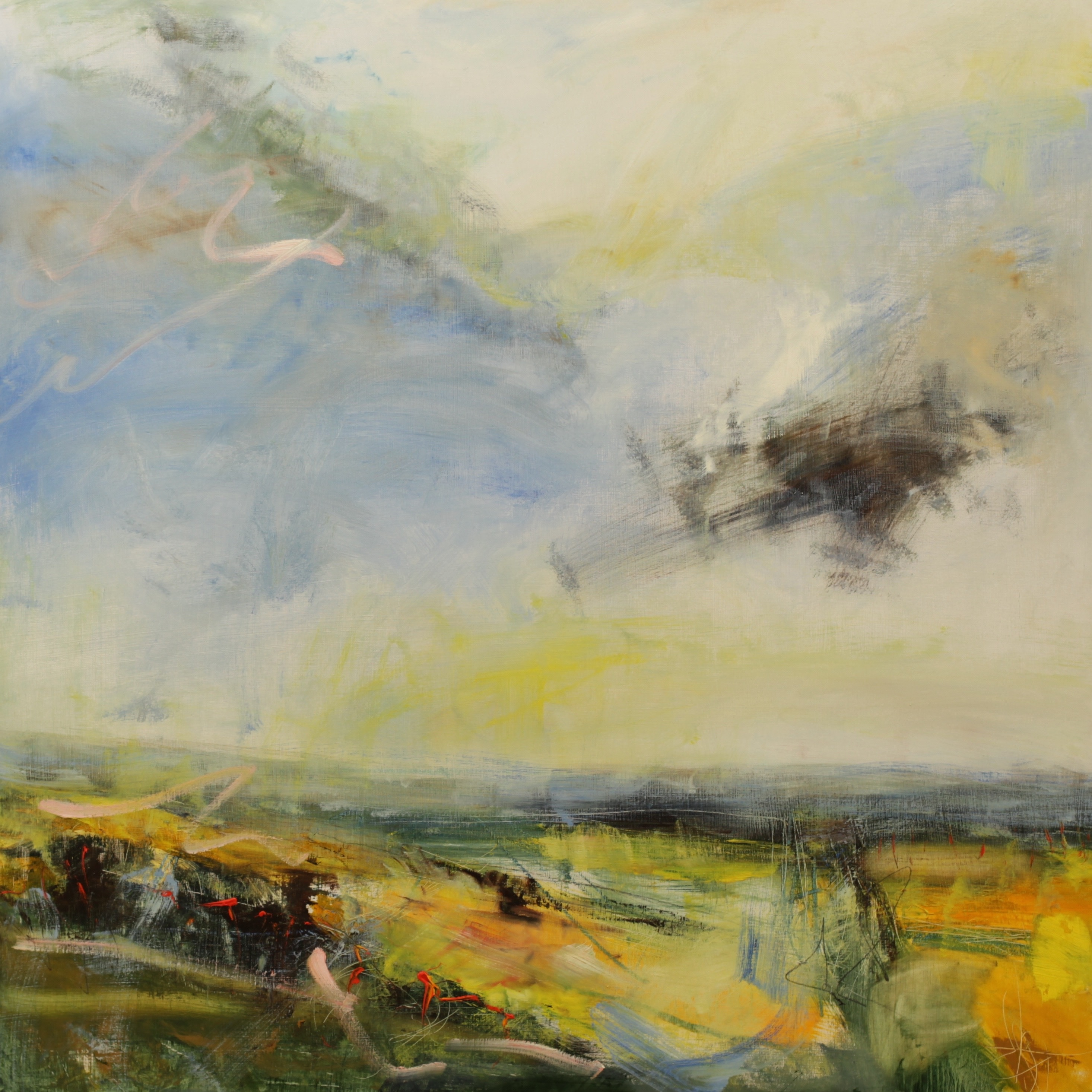 4433174d0 Lucy Marks Interview: Big Skies, Land and Sea - Jackson's Art Blog