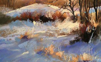 jackson's art supplies schmicnke soft pastels Les Darlow Fading Light