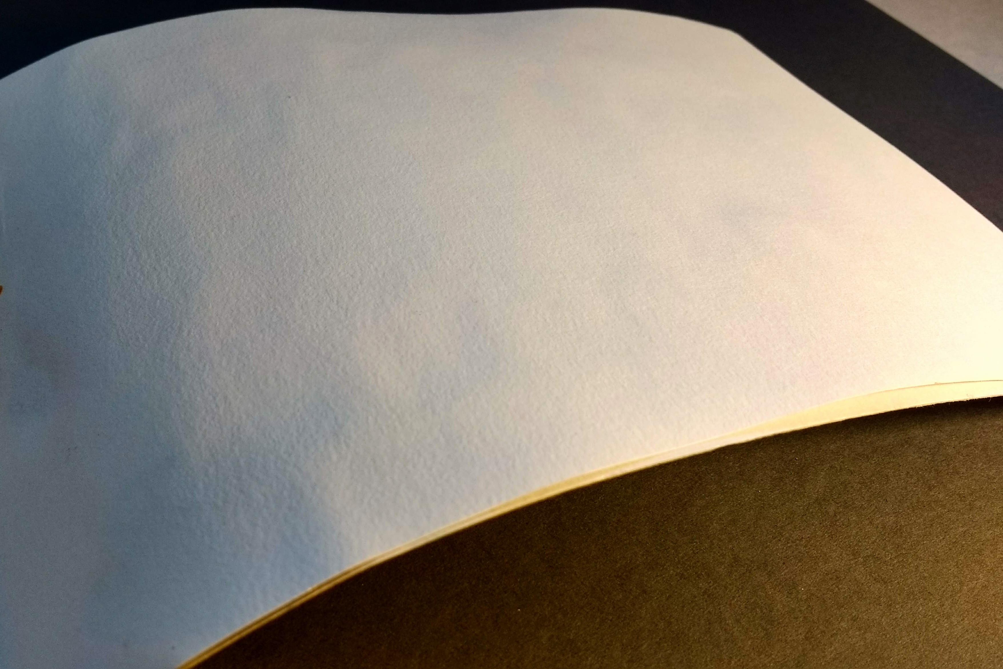 Stillman & Birn- the back of a wet page