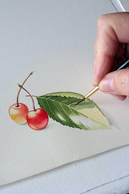 Watercolour by Belinda Biggs