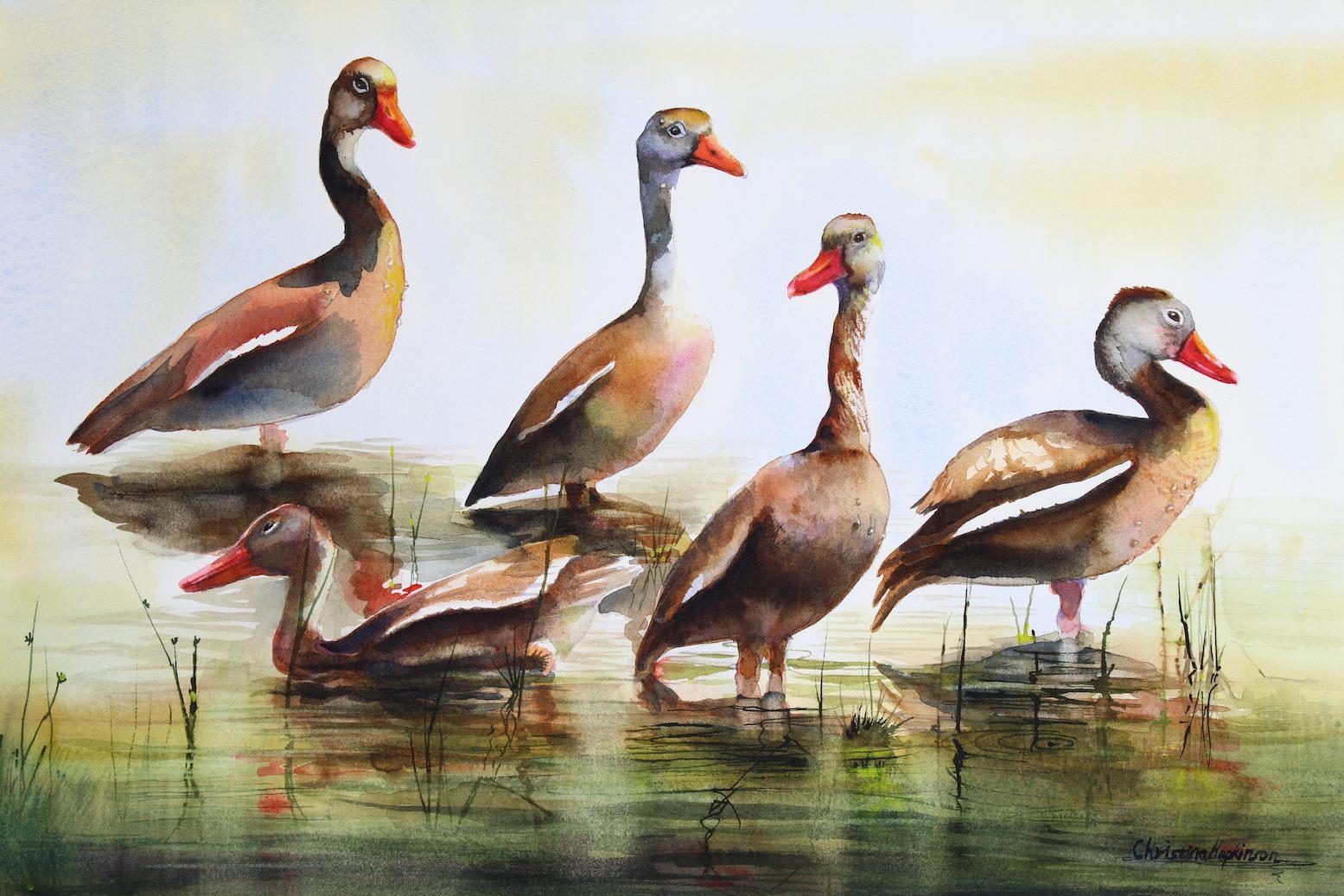 Christina Hopkinson, Black Bellied Whistling Ducks 2 - Myakka Florida