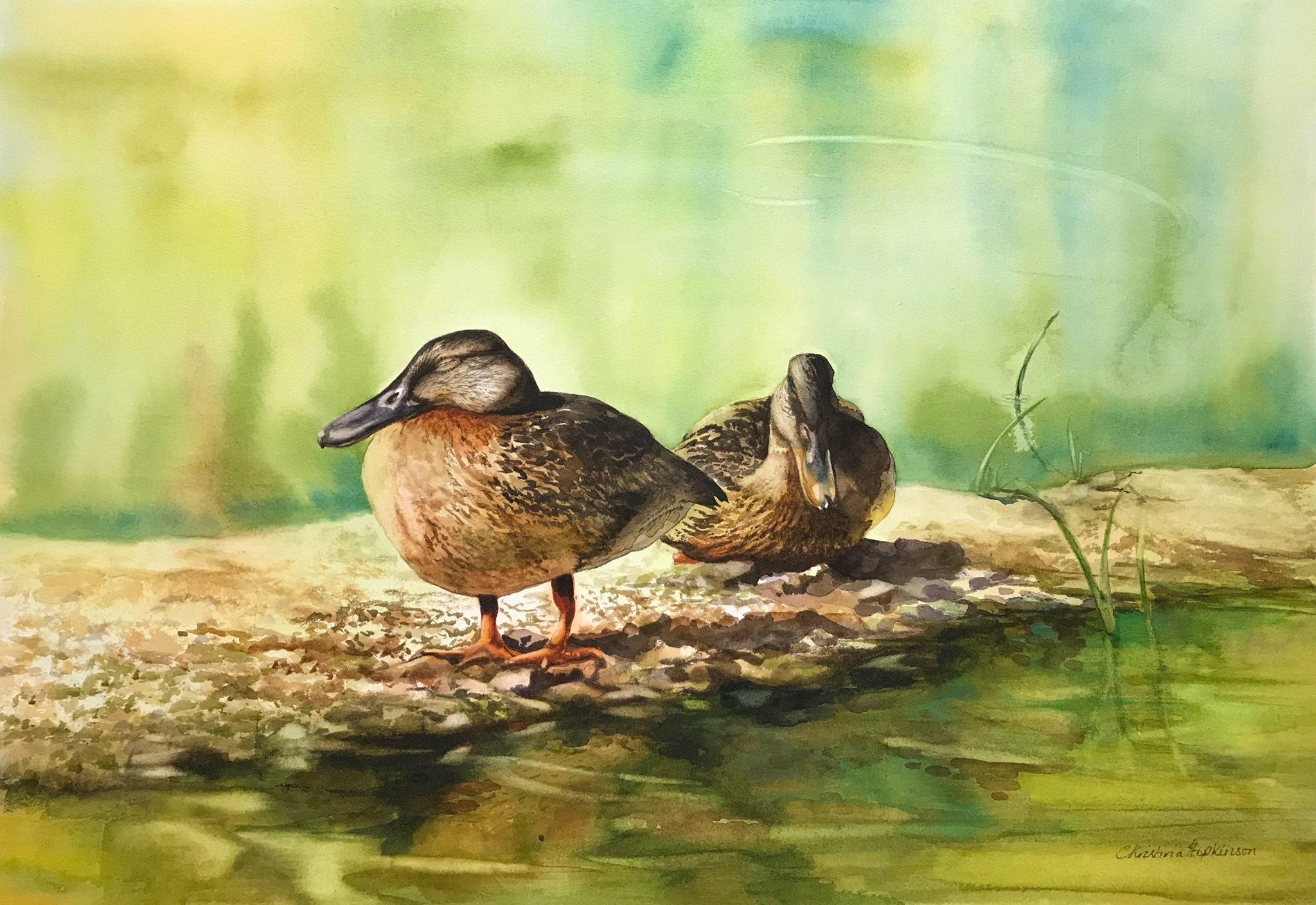 Christina Hopkinson, Golden Slumbers, watercolour on Bockingford CP watercolour board, 15 x 22