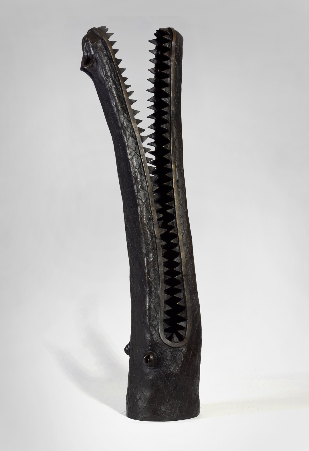 Crocodile Head James Mortimer Bronze
