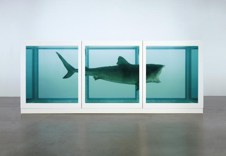Damien Hirst, The Physical Impossibility of Death in the Mind of Someone Living, 1991, 2170 x 5420 x 1800 mm | 85.5 x 213.4 x 70.9 in Glass, painted steel, silicone, monofilament, shark and formaldehyde solution Formaldehyde Image- Photographed by Prudence Cuming Associates © Damien Hirst and Science Ltd. All rights reserved, DACS 2012