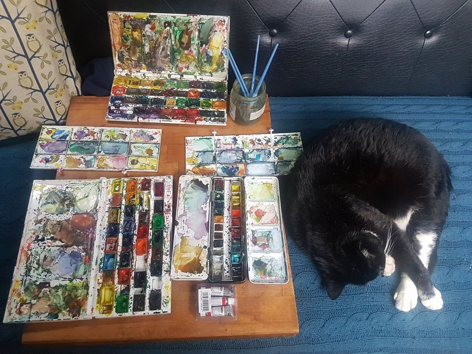 watercolour palettes and cat