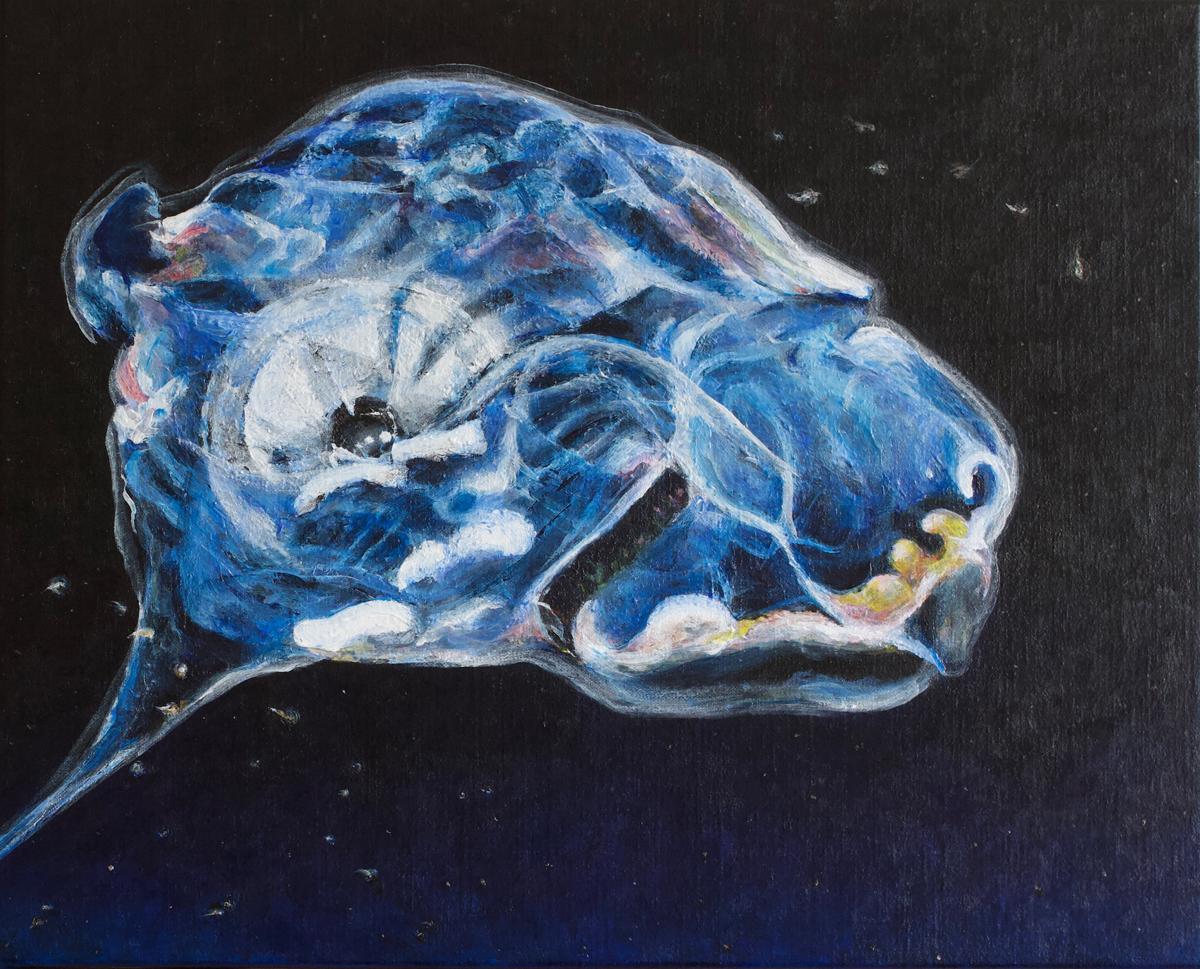Ursa Deep, 2019. 40 x 50cm Acrylic on Linen A. Gould
