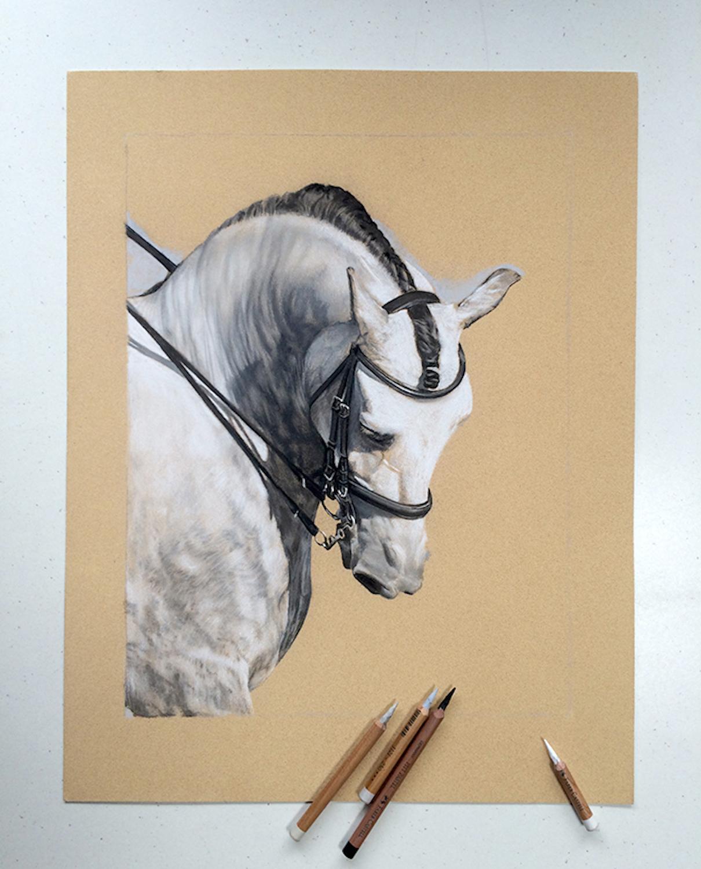 Ali Bannister Realistic Rendering Jackson S Art Blog