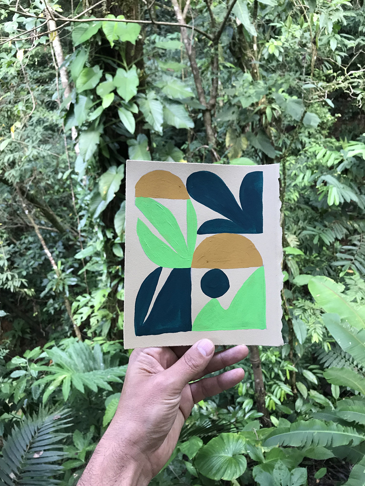 Study made by Cody Hudson during Jaunt #50, Costa Rica January 2019