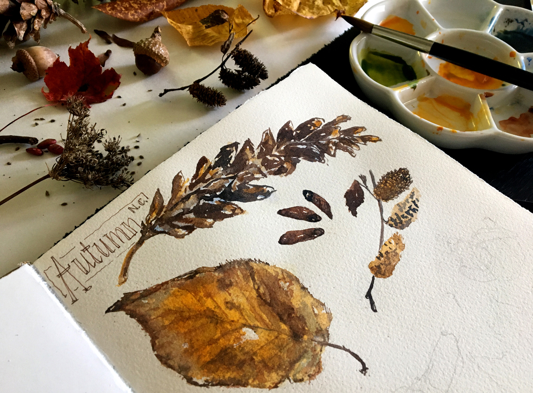 Autumn Nature Journal Page (work in progress)