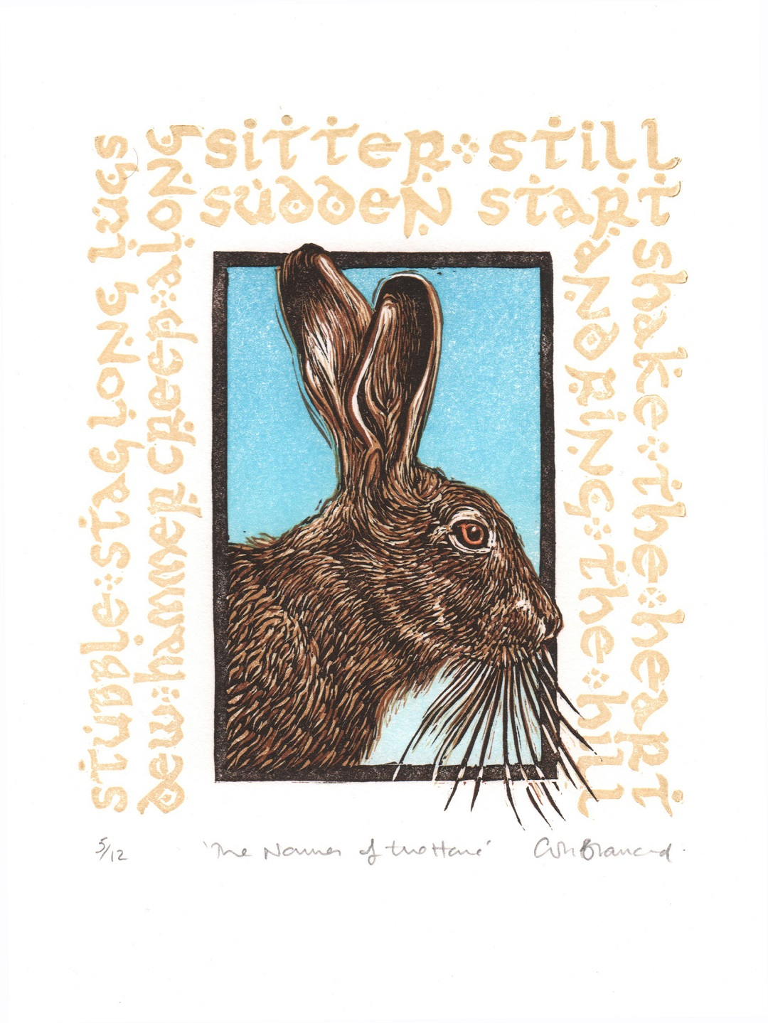 'Names of the Hare' by Colin Blanchard