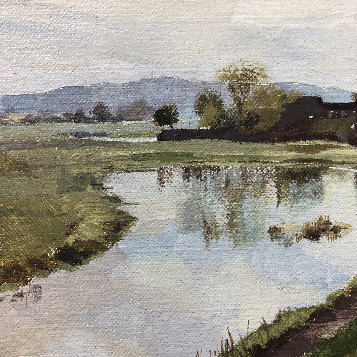 <em>Port Meadow Oxford </em>, Maggie Levien, (detail showing reflections dry brush)