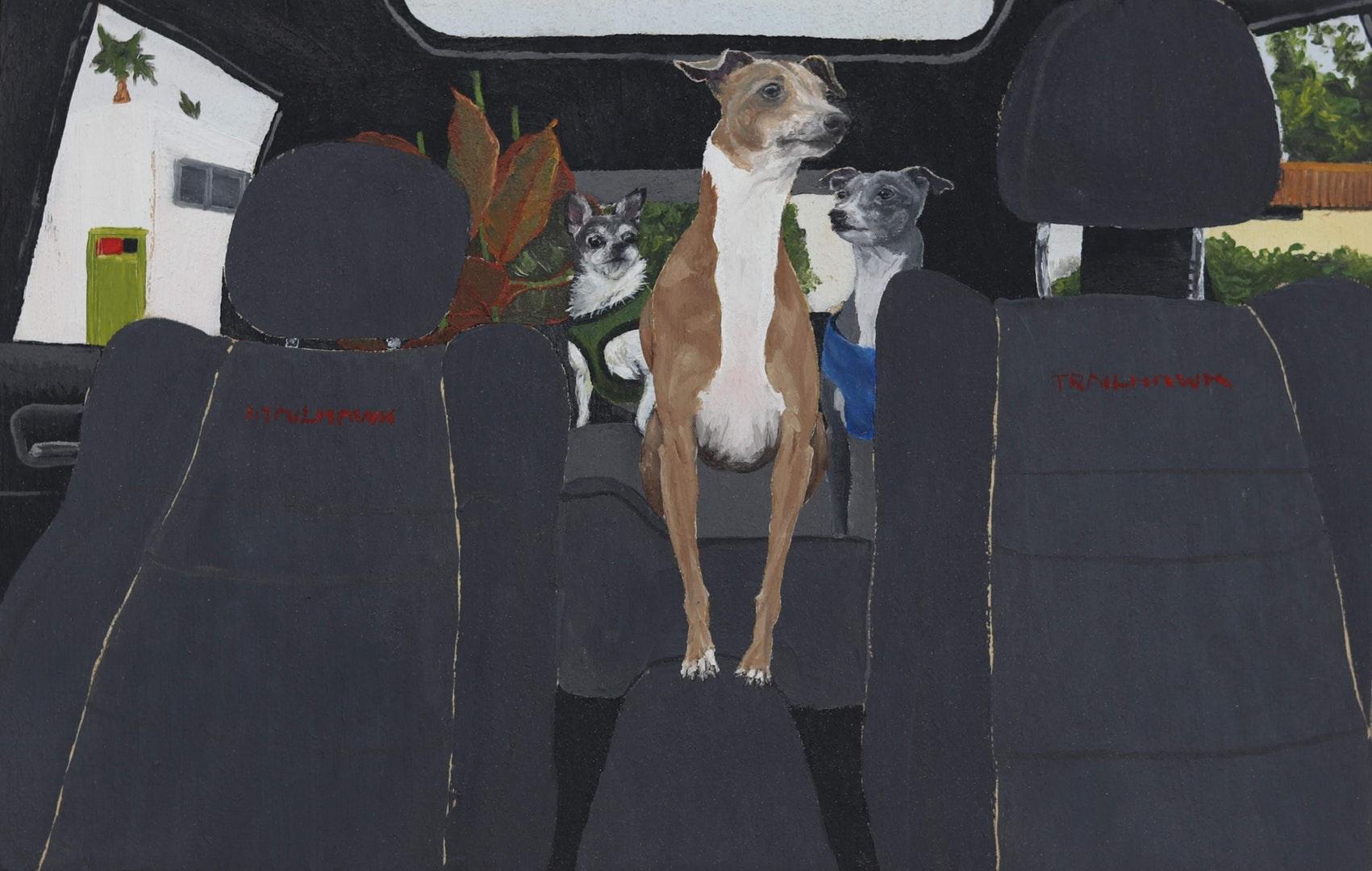 Maddy Buttling. Acheter mes chiens tout ce qu'ils touchent. Liste longue JPP 2020