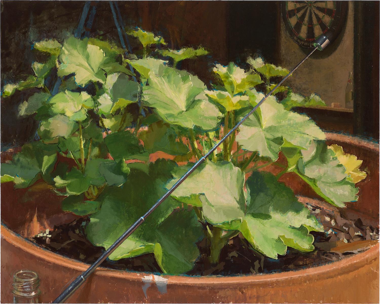 Winter Geranium. Neil Callander. Jackson's Painting Prize.