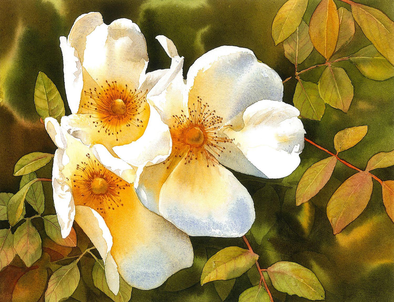 Autumn Roses. Krzysztof Kowalski. Jackson's Painting Prize.