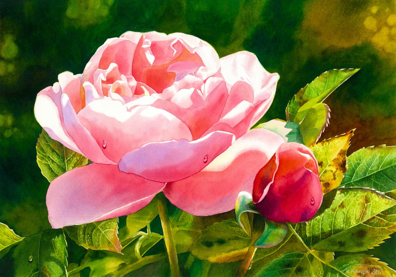 Tales From the Czech Rose Garden. Krzysztof Kowalski. Jackson's Painting Prize.