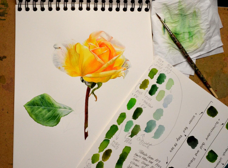 Yellow Rose. Krzysztof Kowalski. Jackson's Painting Prize.