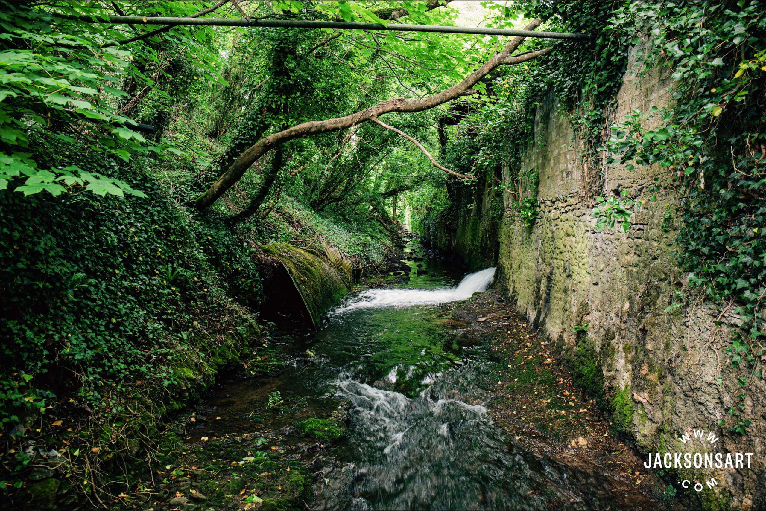 The River Axe