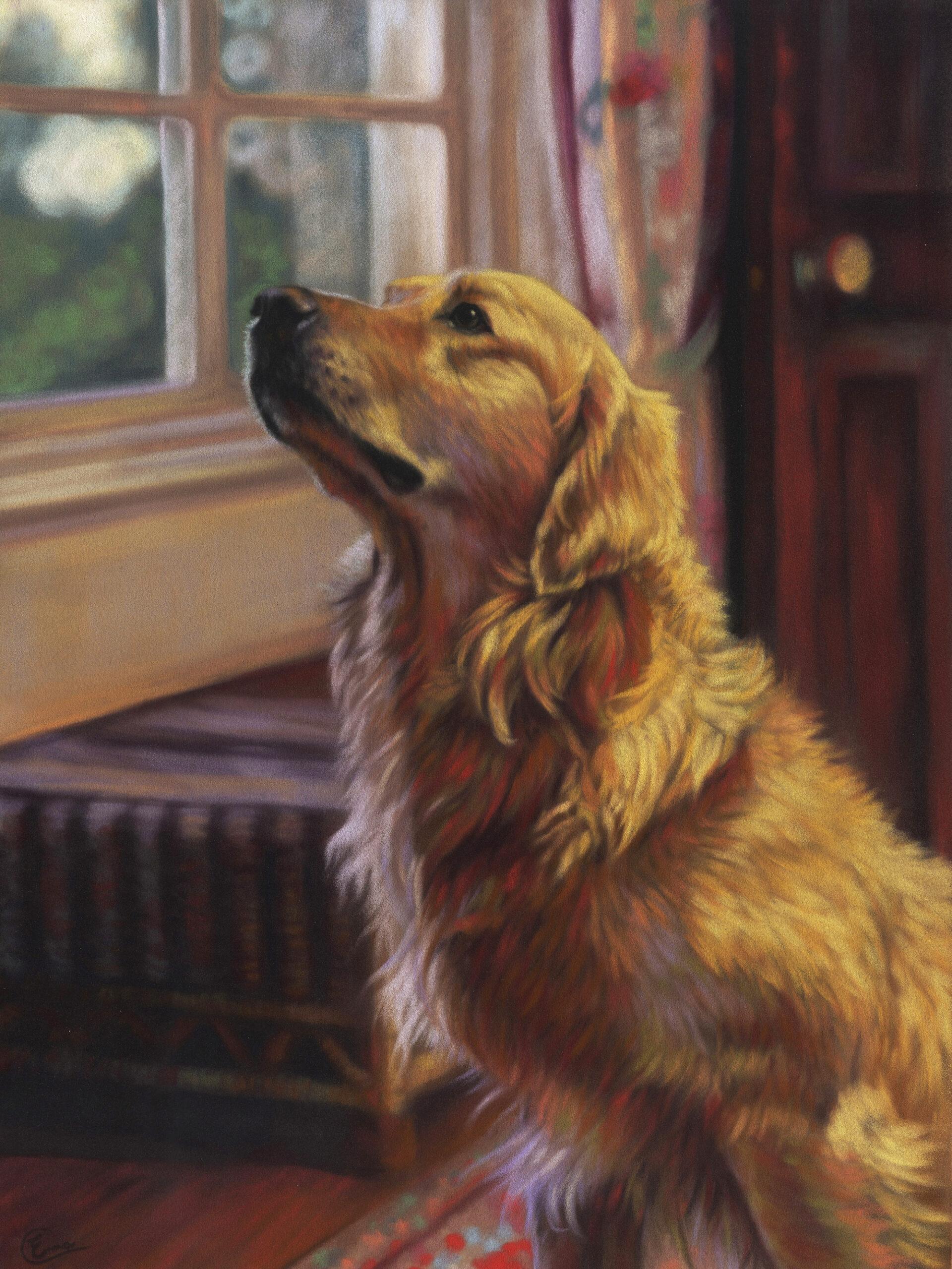 Pet Portrait. Emma Colbert. Jackson's Painting Prize.