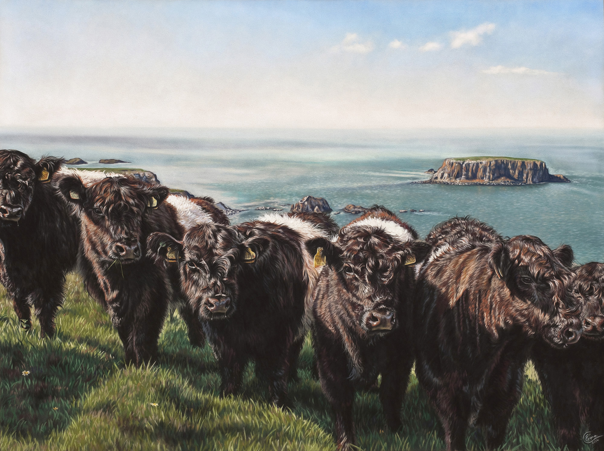 The Belties. Emma Colbert. Jackson's Painting Prize.