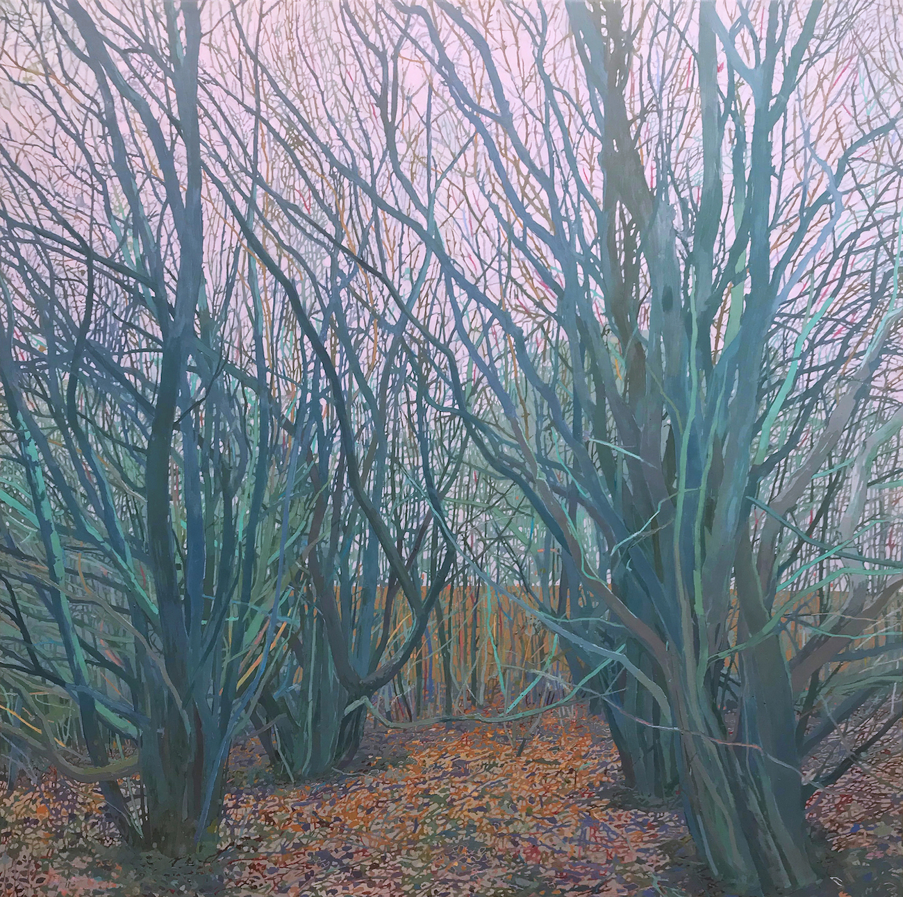 Clearing. Conrad Clarke. Jackson's Painting Prize.