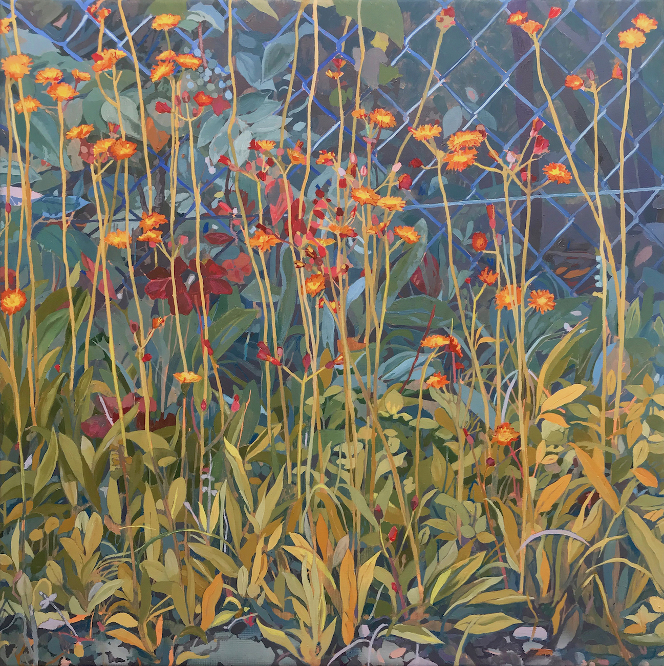 Fox and Cubs. Conrad Clarke. Jackson's Painting Prize.