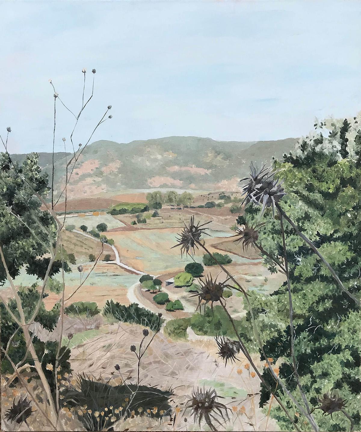 Mount Carmel IV. Zohar Flax. Jackson's Painting Prize.
