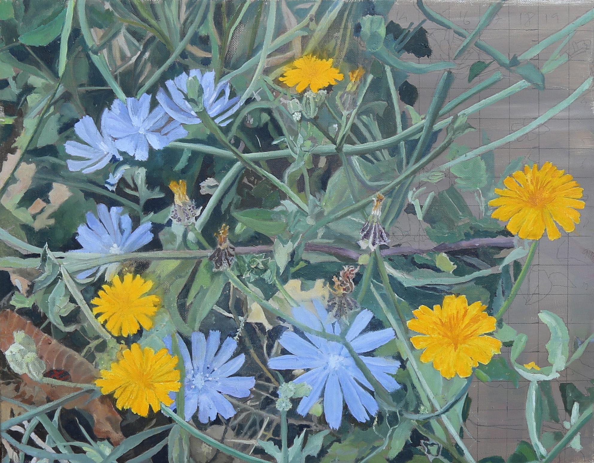 Hawbit and Chicory. Zohar Flax. Jackson's Painting Prize.