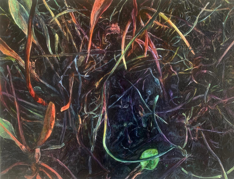 Dark Marsh. Winter Tangle. Judith Tucker. Jackson's Painting Prize.
