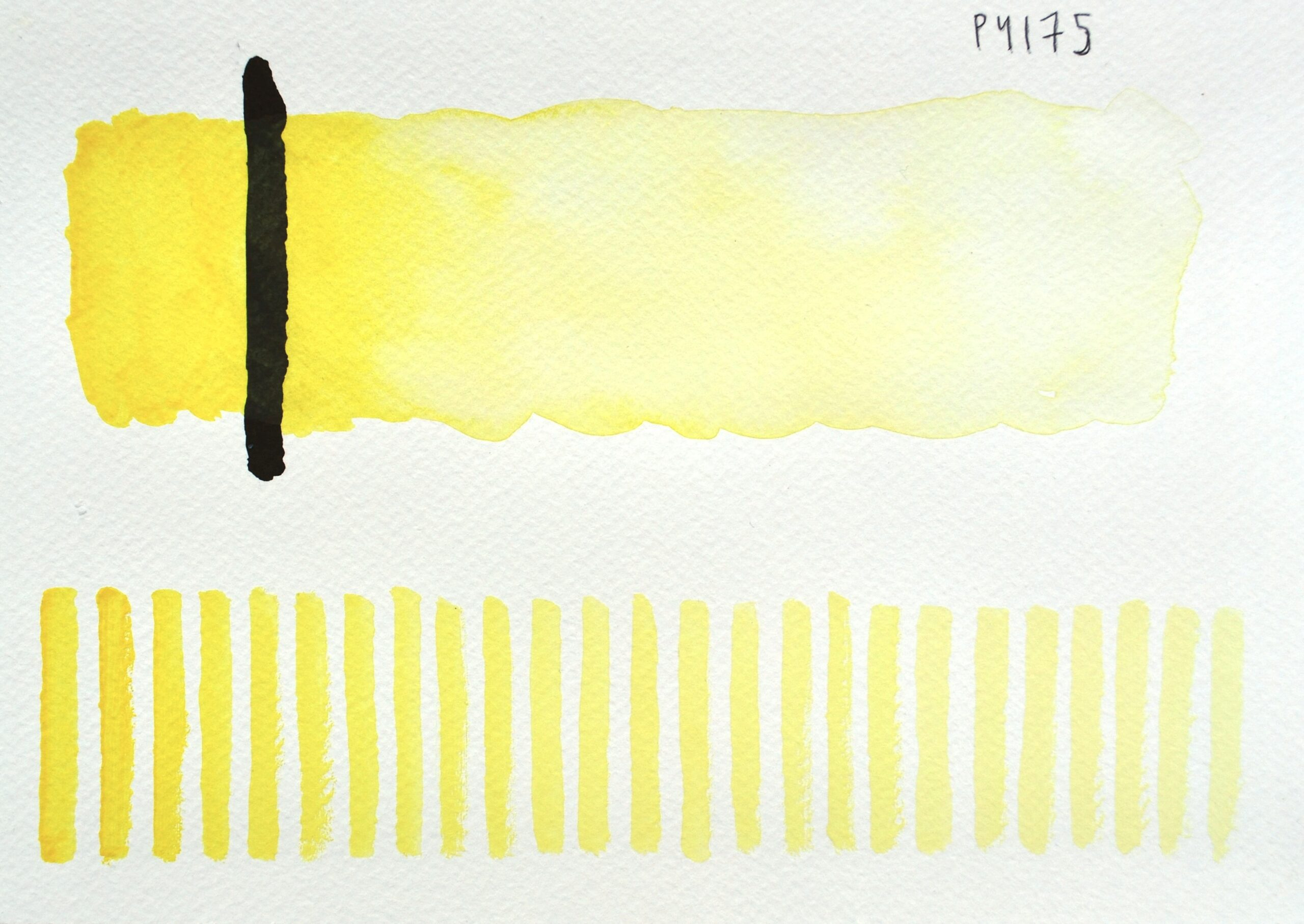 Lemon Yellow PY175