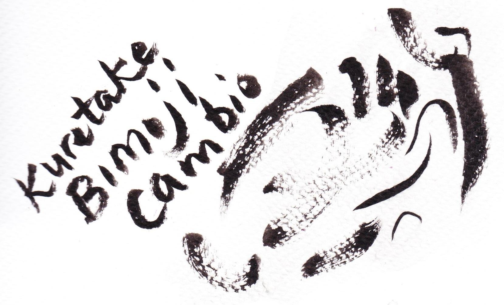 Kuretake Bimoji Cambio large on cold pressed paper