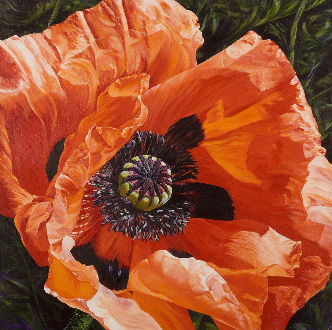 'Poppy in sunlight', Charlie Morley, Acrylic on canvas, 61 x 61 x 4 cm