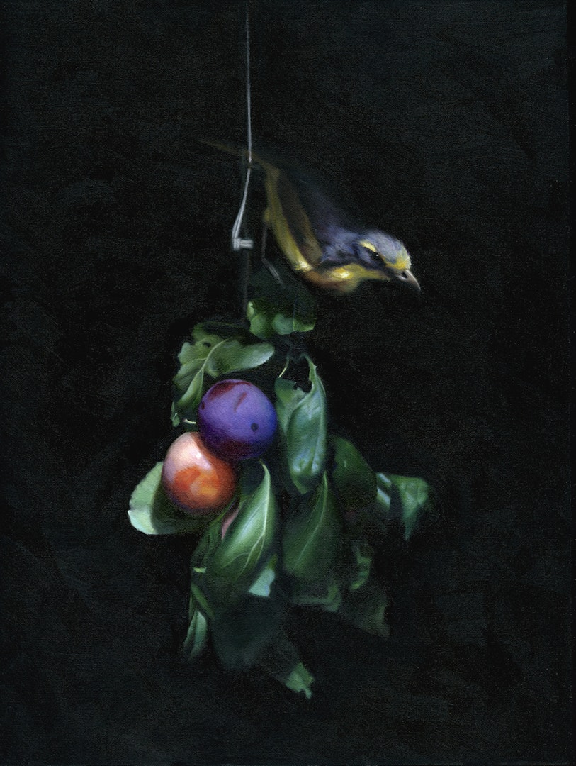 'Still Life with Bird on Plum Branch', Chris Polunin, Oil on canvas, 30 x 40 cm